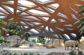 preistrager_2015_elefantenpark_zoo_zuerich_web.jpg